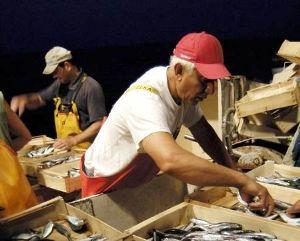 Operatori compartimenti marittimi al lavoro (ivg-it)