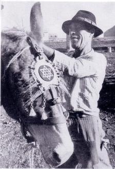 Antonio Bonfitto e il suo asino