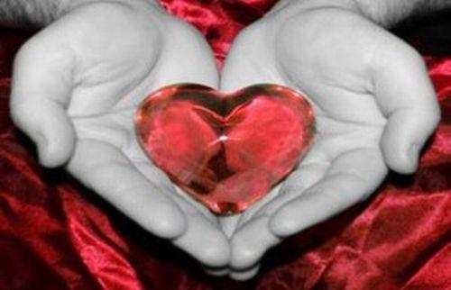 Giornata mondiale cuore (medicinalive)