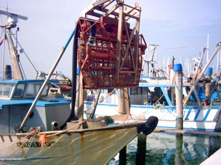 Pesca 3.6 in linea