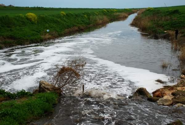 Goletta verde a fine giugno foce candelaro fortemente - Portano acqua ai fiumi ...