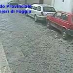 video piemontese6 - MANFREDONIA (4)