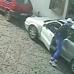video piemontese6 - MANFREDONIA (6)