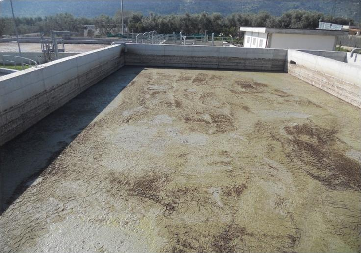 Depuratore Manfredonia (da PP CC-GC 22.08.2014)