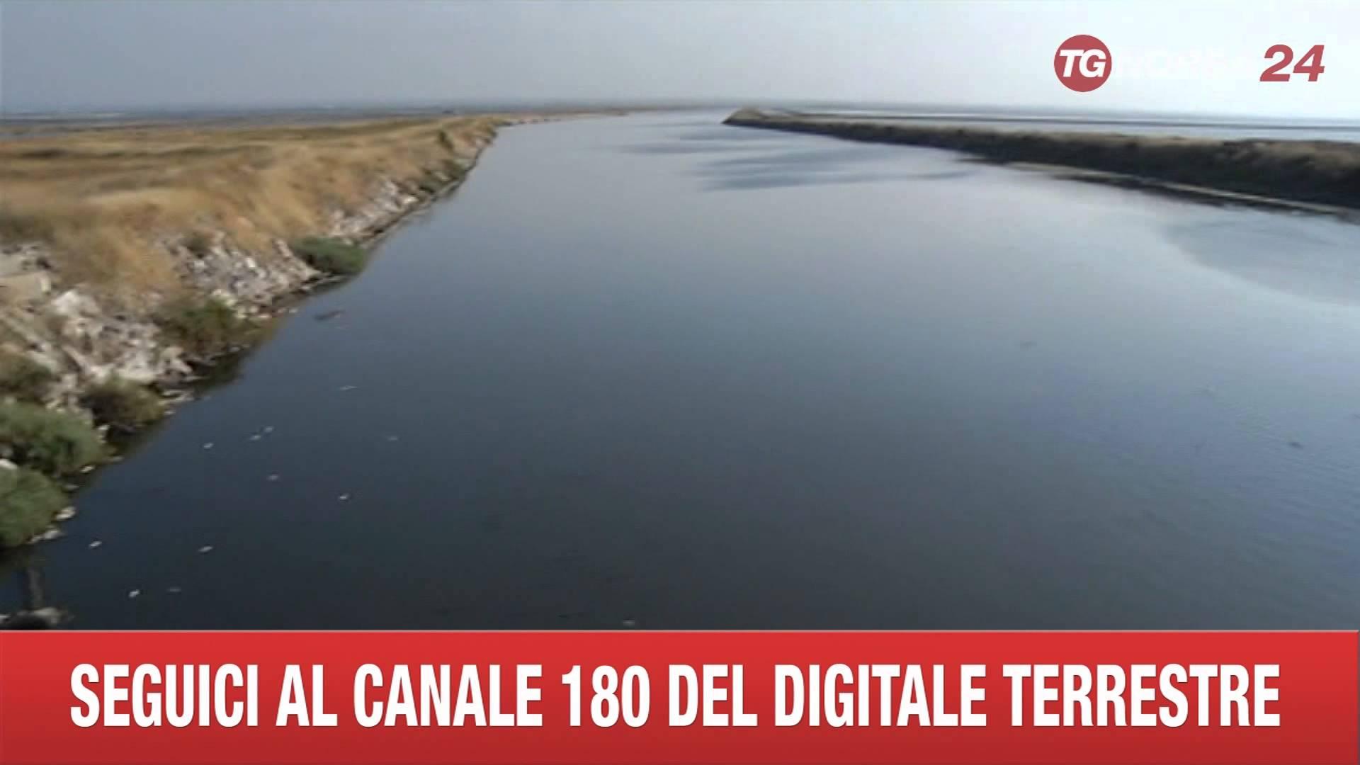 """Moria pesci Foce Carmosina, Lac: """"esposto in Procura"""""""