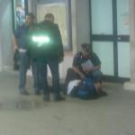 """Stazione di Foggia, accalappiato """"Leone"""" e affidato al canile"""