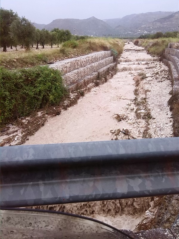alluvionegarganomacchia-antoniotroiano (2)