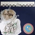 Manfredonia, spaccio droga, 2 arresti, 4 indagati