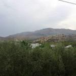 Macchia - Monte Sant'Angelo (IMMAGINE D'ARCHIVIO)