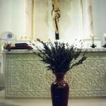 2005. Domenica delle Palme nella Chiesa di S.Francesco
