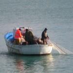 Pescatori intenti a salpare reti da posta