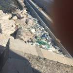 rifiuti-portomanfredonia (2)