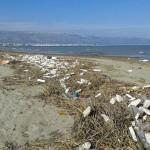 rifiuti-rivierasudamanfredonia (2)