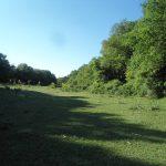 6. - Vallone zona Tomaiuolo