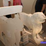 inaugurazione museo diocesano 09072016 (2)