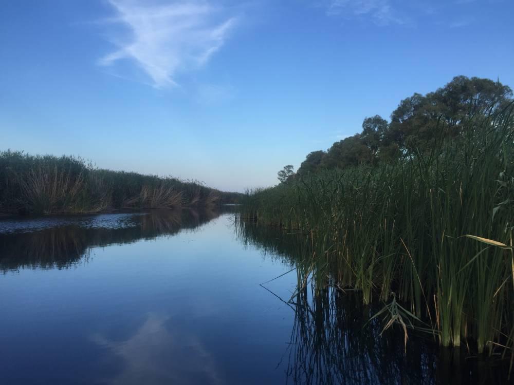 Risultati immagini per lago salso