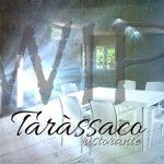 tarassaco-manfredonia-11
