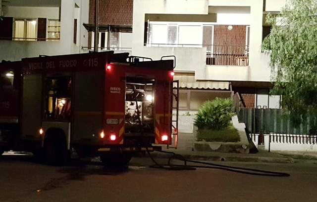 Incendio parco Lucania - stato quotidiano image