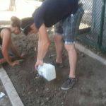 piazza bovio manfredonia (2)